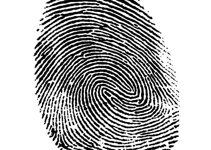 fingerprint identity photo